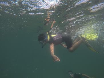 """Thỏa sức vẫy vùng biển khơi với """"kỳ nghỉ đại dương"""" tại Vinpearl - Ảnh 7."""