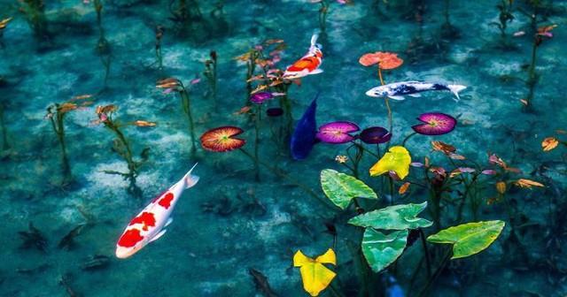 Ao nước đẹp tới mức khó tin có thật ngoài đời thực - Ảnh 2.