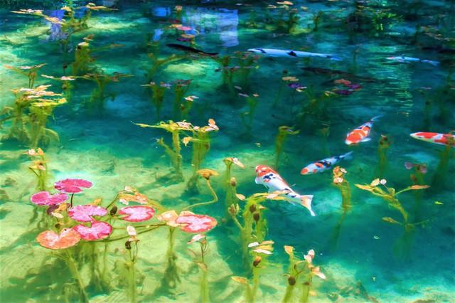 Ao nước đẹp tới mức khó tin có thật ngoài đời thực - Ảnh 3.