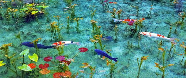 Ao nước đẹp tới mức khó tin có thật ngoài đời thực - Ảnh 5.