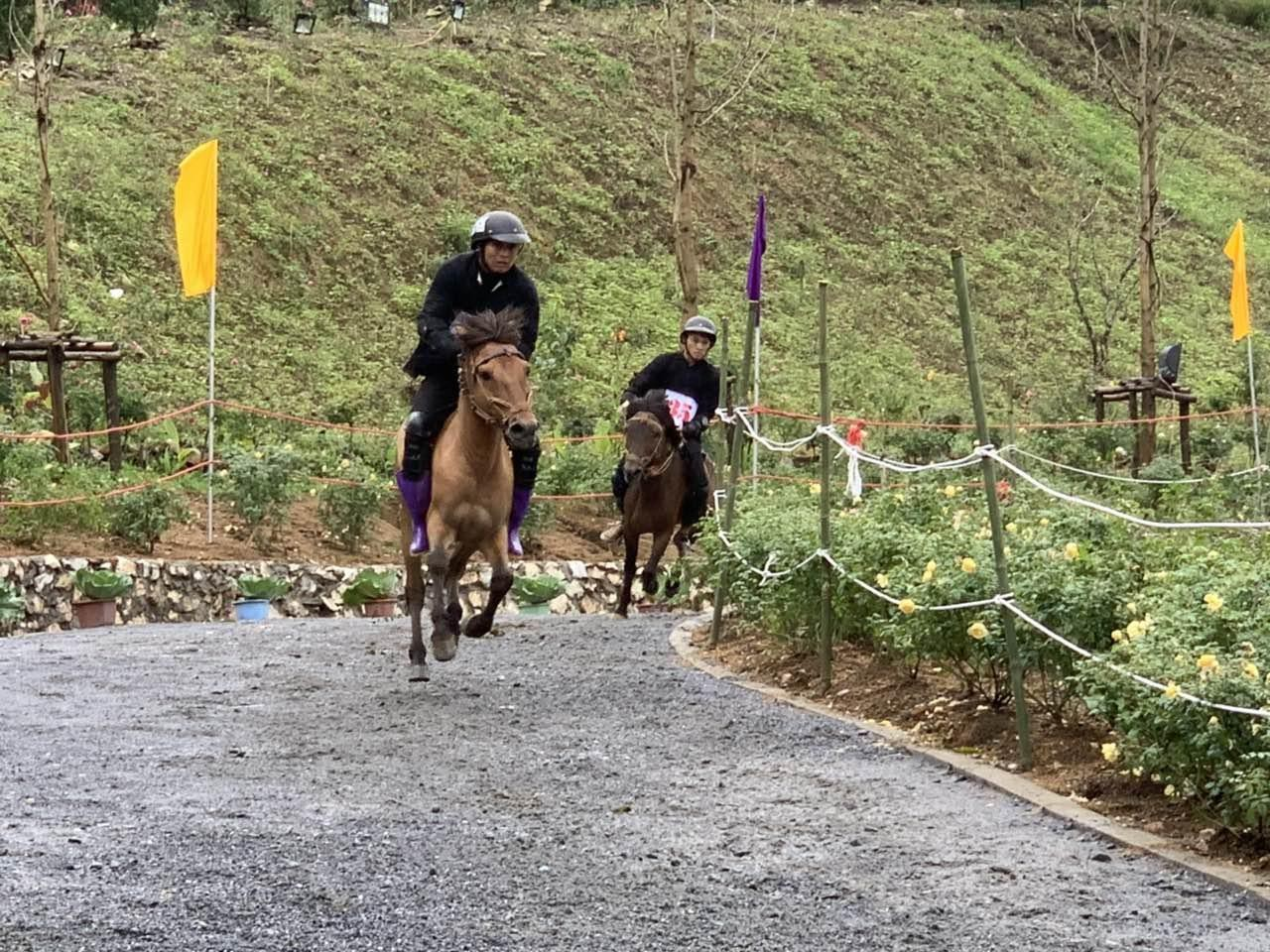 Chất Tây Bắc sống động khiến du khách thích thú với Giải đua ngựa tại  Fansipan - Ảnh 5.