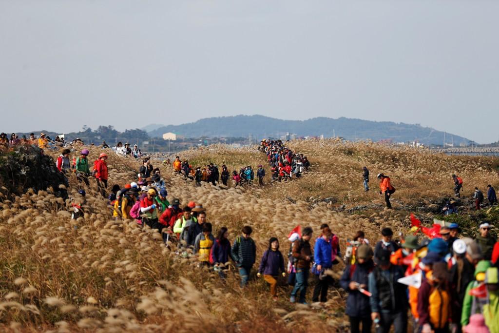 Từ trường hợp của Jeju, nghĩ về tương lai của du lịch Phú Quốc - Ảnh 1.