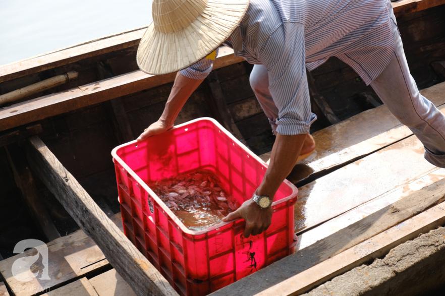 """Người Sài Gòn thả hàng trăm ký cá ngày 23 tháng Chạp: Ông Táo """"chưa kịp cưỡi về trời"""" thì cá đã bị chích điện - Ảnh 11."""