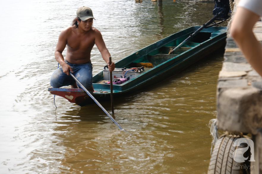"""Người Sài Gòn thả hàng trăm ký cá ngày 23 tháng Chạp: Ông Táo """"chưa kịp cưỡi về trời"""" thì cá đã bị chích điện - Ảnh 15."""