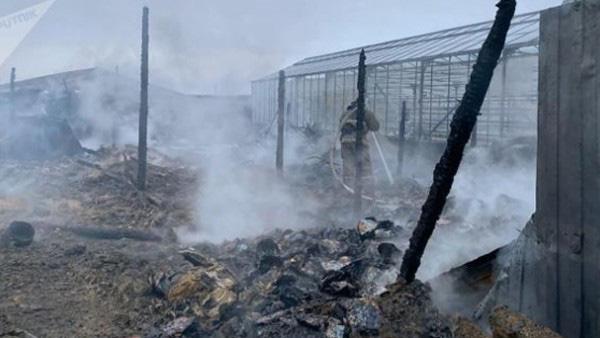 Cháy lớn tại Nga, nghi có nạn nhân thiệt mạng là người Việt Nam - Ảnh 1.