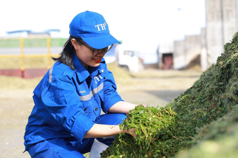 TH Group thăng hạng, lọt Top 6 nơi làm việc tốt nhất Việt Nam - Ảnh 3.