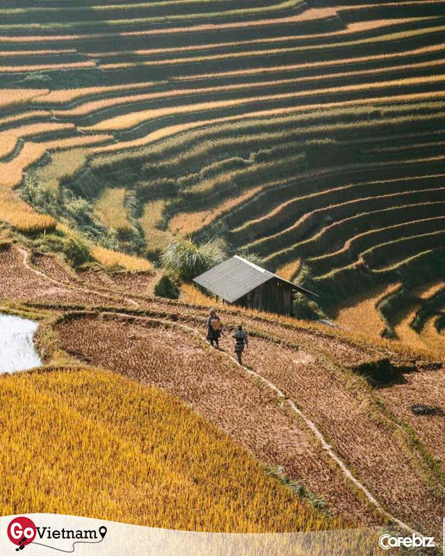 Tháng 10 - tháng của những kẻ nghiện dịch chuyển: Cheo leo trên rẻo cao Tây Bắc, đắm chìm vào Mùa thu vàng mênh mang  - Ảnh 3.