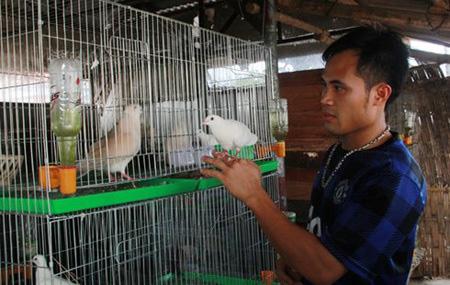 Du học về Việt Nam nhưng lương quá thấp, chàng trai nghỉ việc đi nuôi chim, doanh thu 15 tỷ/năm - Ảnh 2.