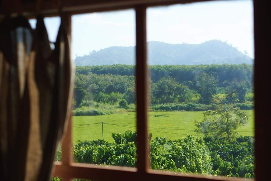 Khoe nhà gỗ có phòng áp mái xinh xắn view thẳng ra núi rừng, chủ nhân Bếp trên đỉnh đồi tiết lộ những khó khăn của cuộc sống bỏ phố về quê - Ảnh 5.