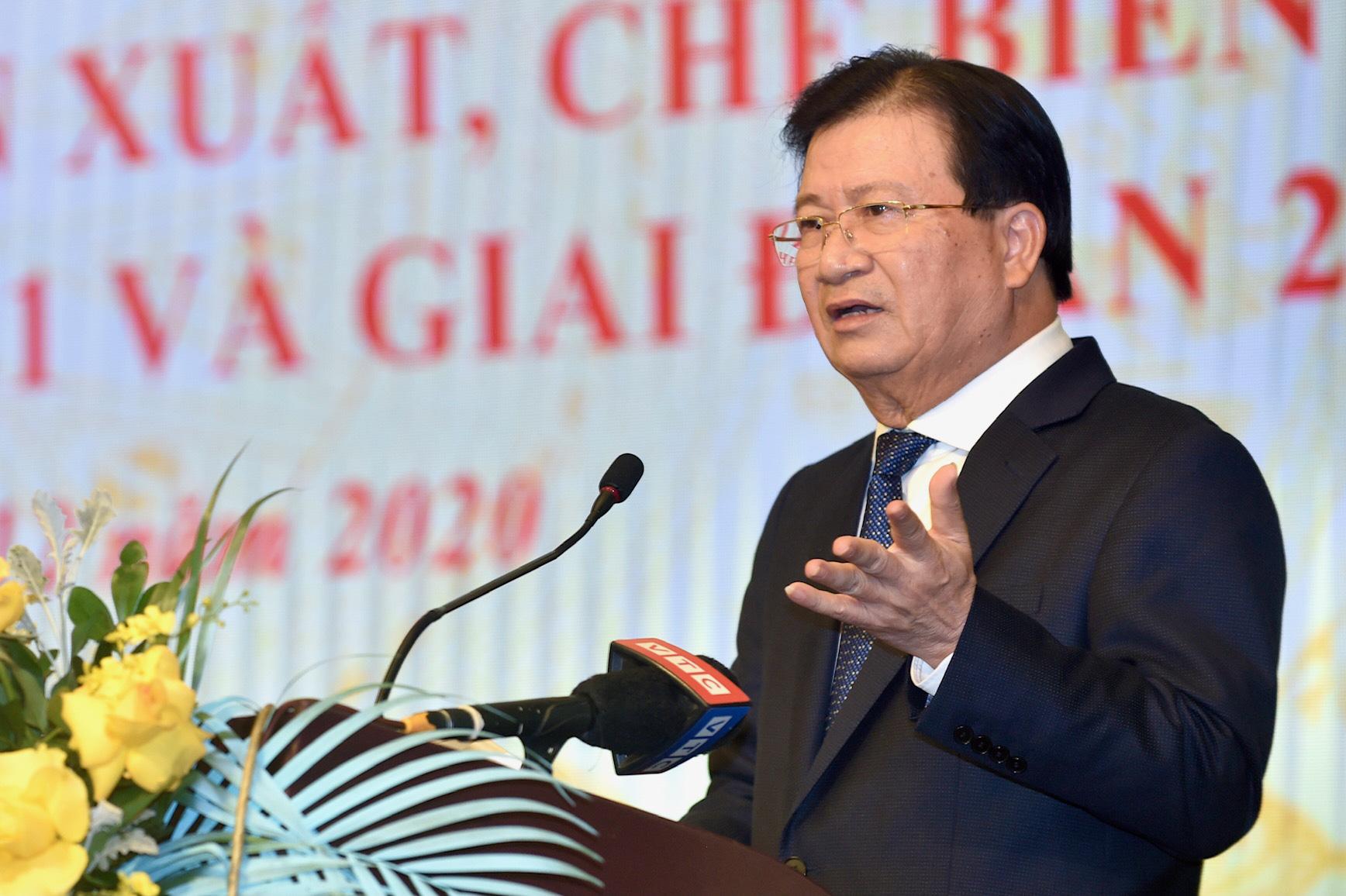 Phó Thủ tướng Trịnh Đình Dũng: Đến năm 2025 phấn đấu có ít nhất 1 triệu ha rừng trồng gỗ lớn  - Ảnh 1.