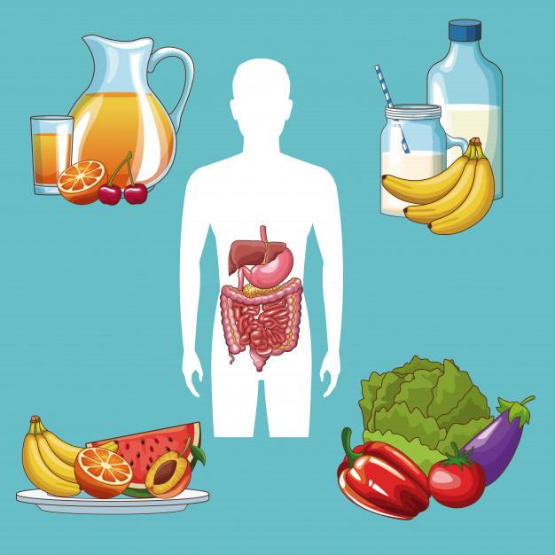 Chìa khóa sức khỏe rẻ đến không ngờ: Gần 80% chức năng miễn dịch của cơ thể tồn tại ở đây - Ảnh 2.