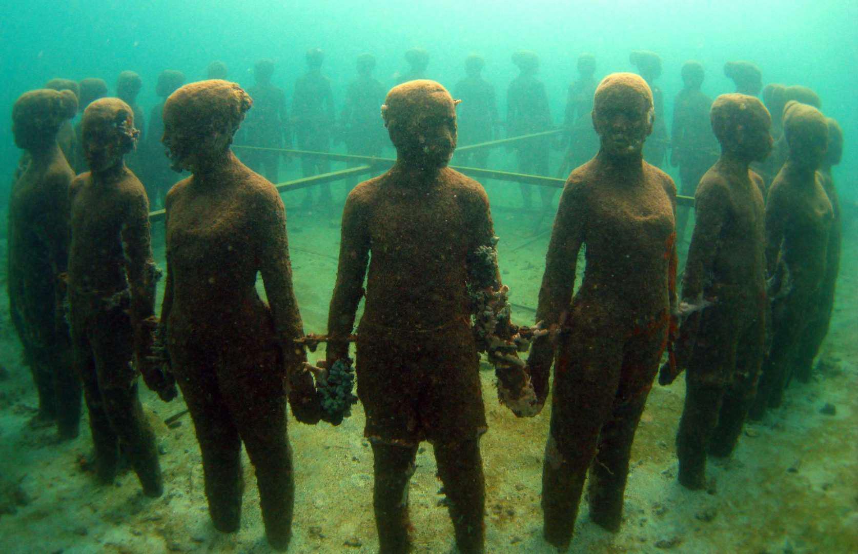kỳ quan dưới nước - Ảnh 2.