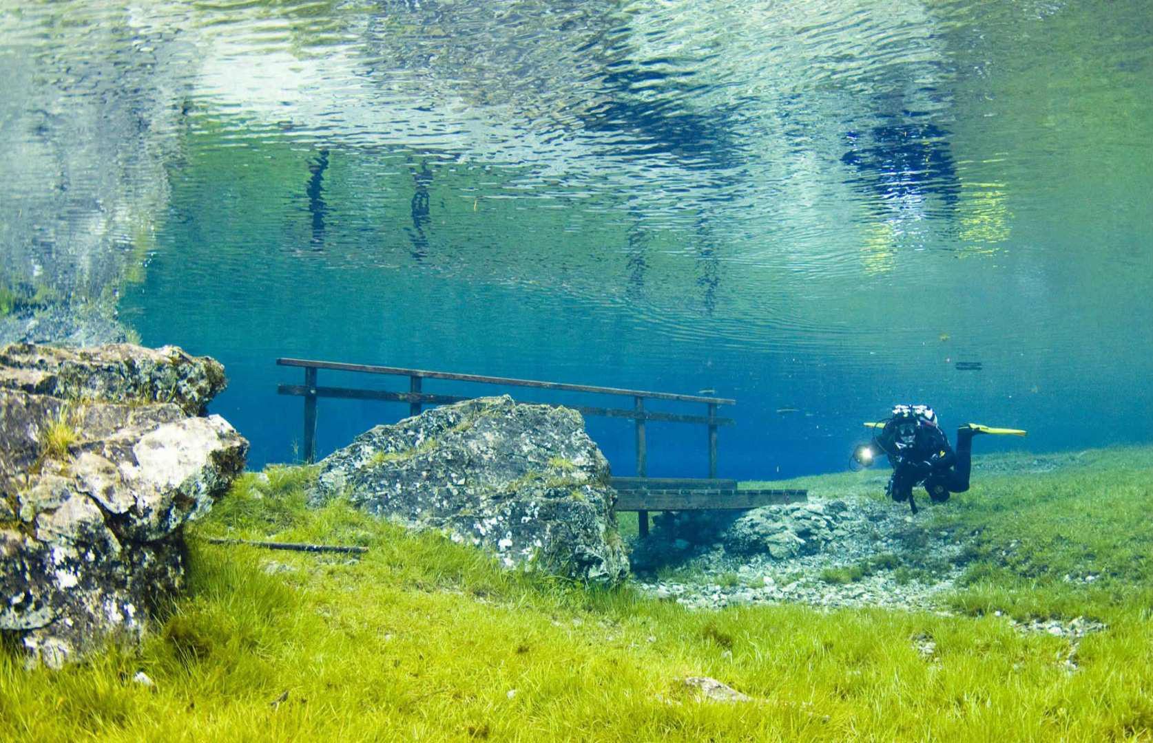 kỳ quan dưới nước - Ảnh 7.