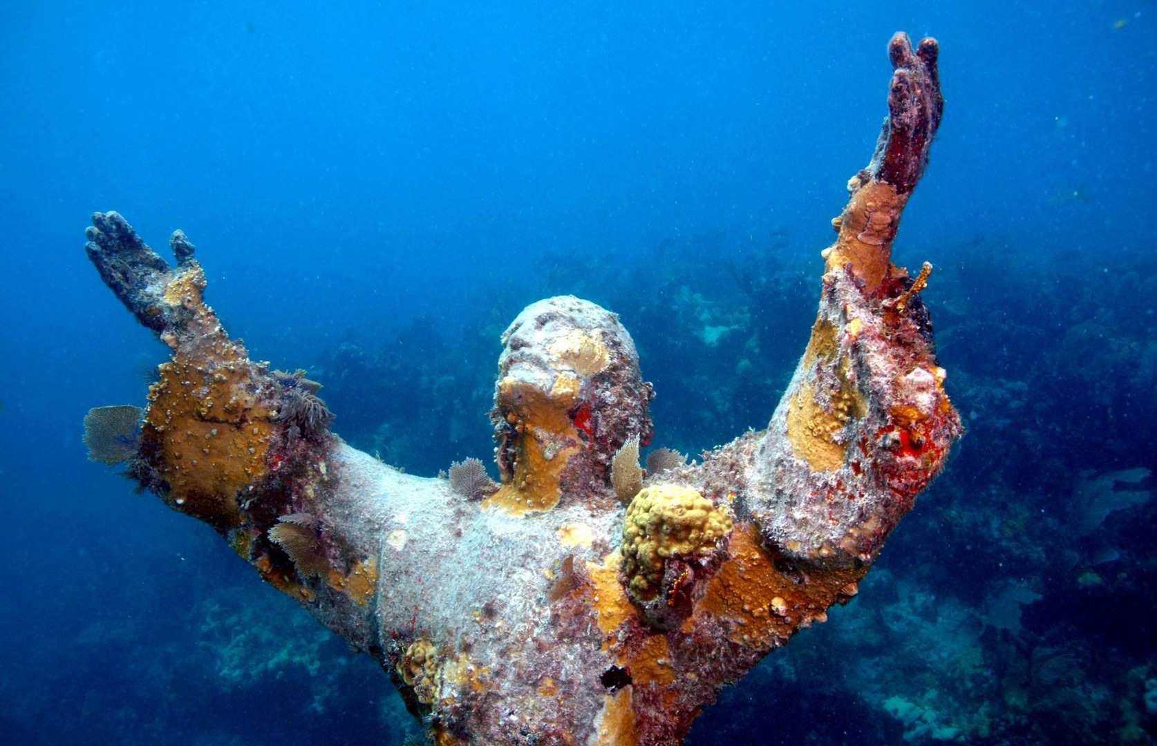 kỳ quan dưới nước - Ảnh 4.