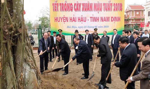 Thủ tướng chỉ thị: Cả nước chung sức, đồng lòng trồng mới 1 tỷ cây xanh - Ảnh 1.