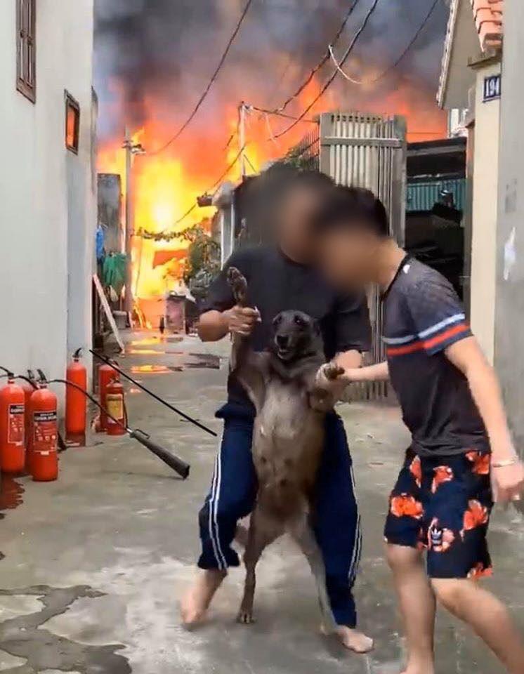 Clip: Người người nhà nhà đang hốt hoảng vì cháy lớn, riêng nhân vật này vẫn quyết tâm bám trụ khiến hai bố con chủ nhà phải xồng xộc vào cứu - Ảnh 2.