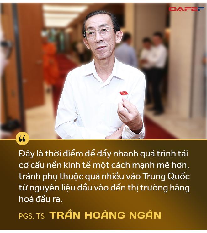 PGS.TS. Trần Hoàng Ngân: Dịch Covid-19 là cơ hội để Việt Nam đẩy mạnh tái cơ cấu toàn bộ nền kinh tế và củng cố niềm tin cho nhà đầu tư - Ảnh 4.