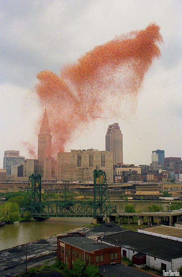 Lễ hội Balloonfest' 86: Thảm họa bóng bay đầy kỳ lạ đi vào lịch sử nước Mỹ - Ảnh 3.