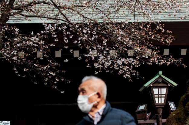 Nhật Bản rộn ràng đón hoa anh đào bất chấp Covid-19 - Ảnh 4.