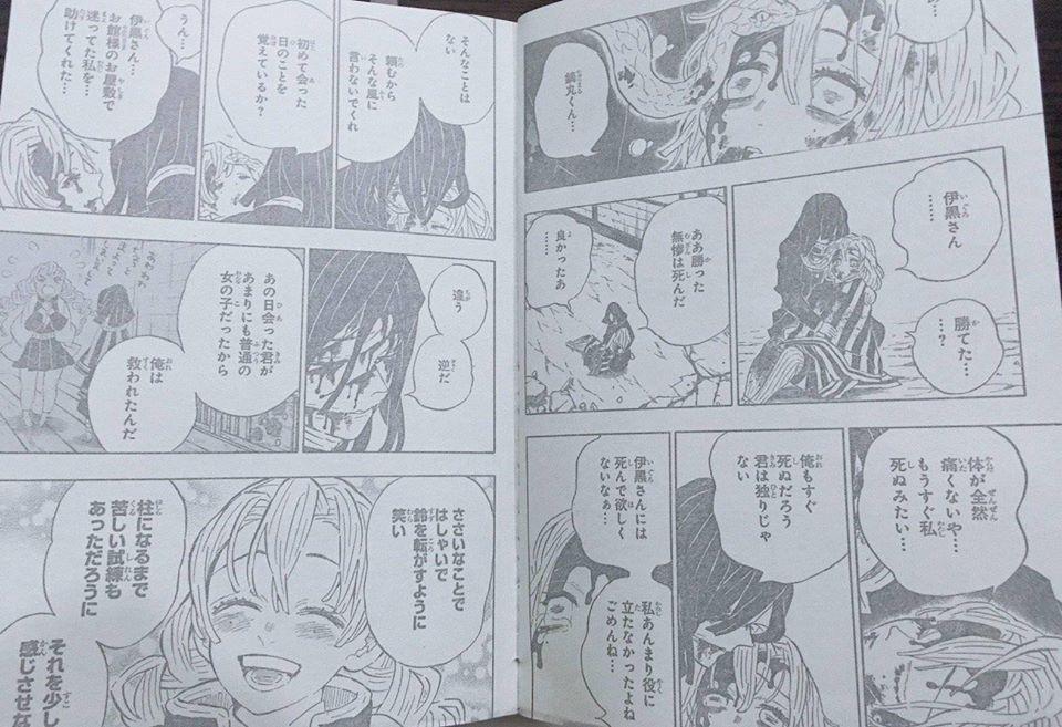 Kimetsu no Yaiba chương 200: Muzan bị đánh bại, hàng loạt nhân vật chính hy sinh - Ảnh 3.