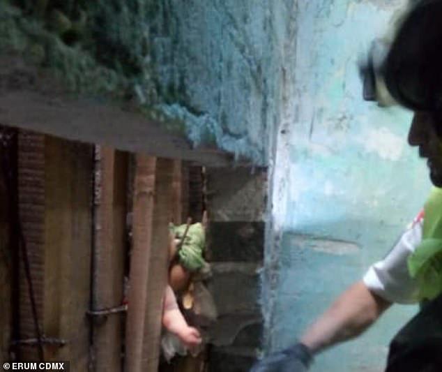 Nghe thấy âm thanh kỳ lạ giữa hai bức tường, người dân lập tức cầu cứu cảnh sát và hoảng hốt khi chứng kiến sự thật trước mắt - Ảnh 3.