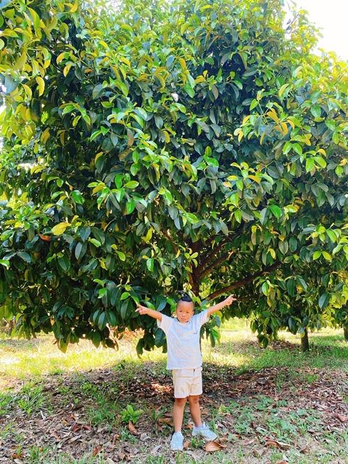 NTK Đỗ Mạnh Cường hé lộ khu vườn ngập trái cây - Ảnh 8.