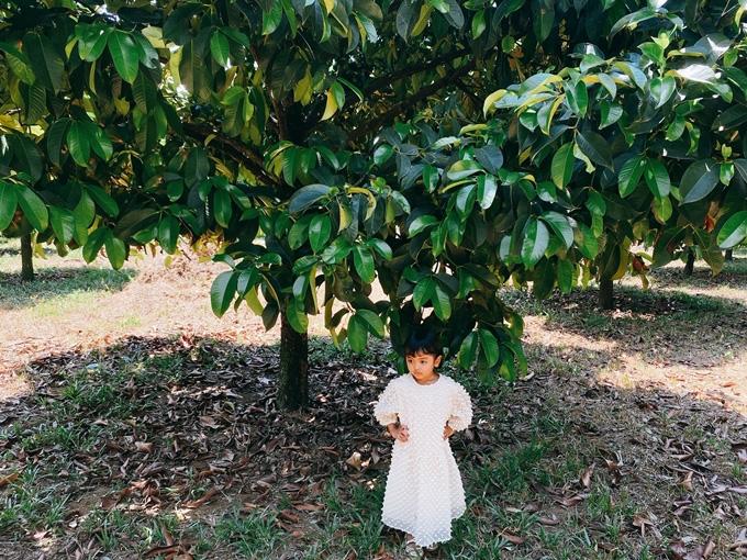 NTK Đỗ Mạnh Cường hé lộ khu vườn ngập trái cây - Ảnh 9.