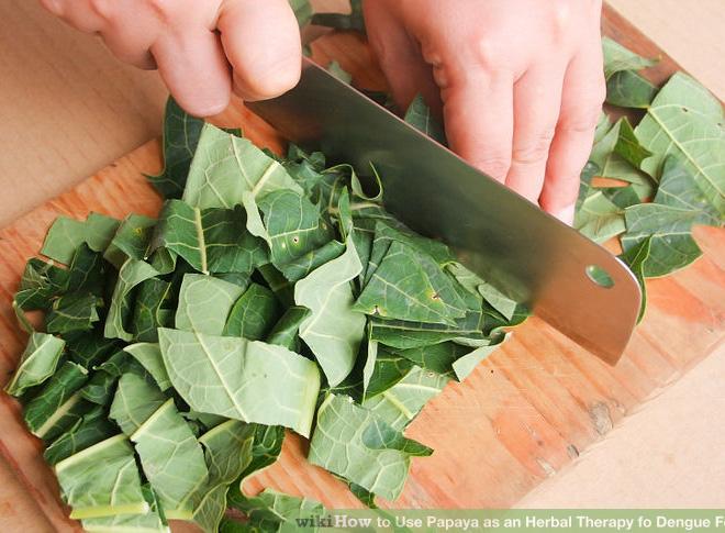 22 lợi ích sức khỏe đáng kinh ngạc của lá đu đủ - Ảnh 2.