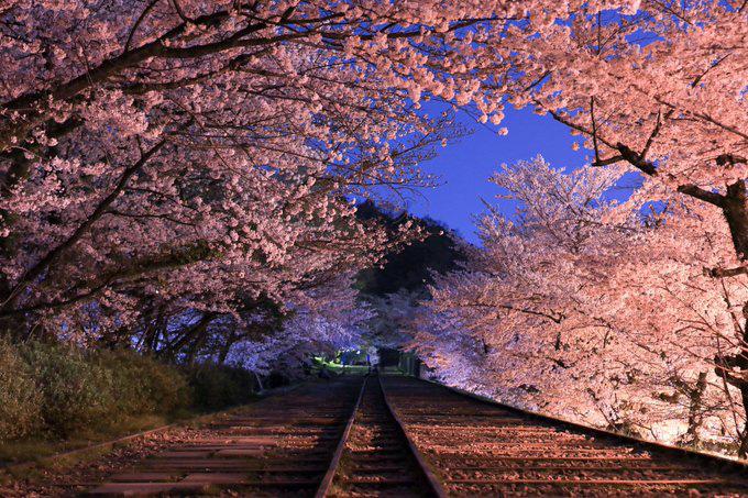 Sự thật buồn về đường ray tình yêu nổi tiếng Nhật Bản: Tưởng chung đường nhưng lại chia đôi ngả - Ảnh 2.