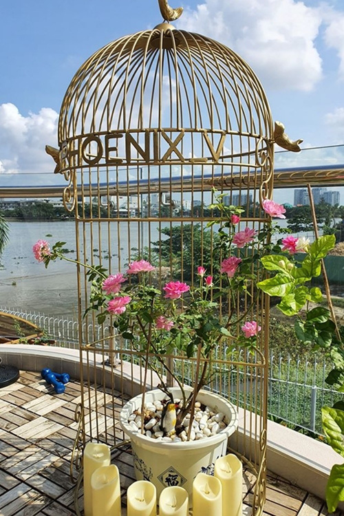 Khu vườn ngập sắc hoa trong biệt thự của Vũ Thu Phương - Ảnh 13.