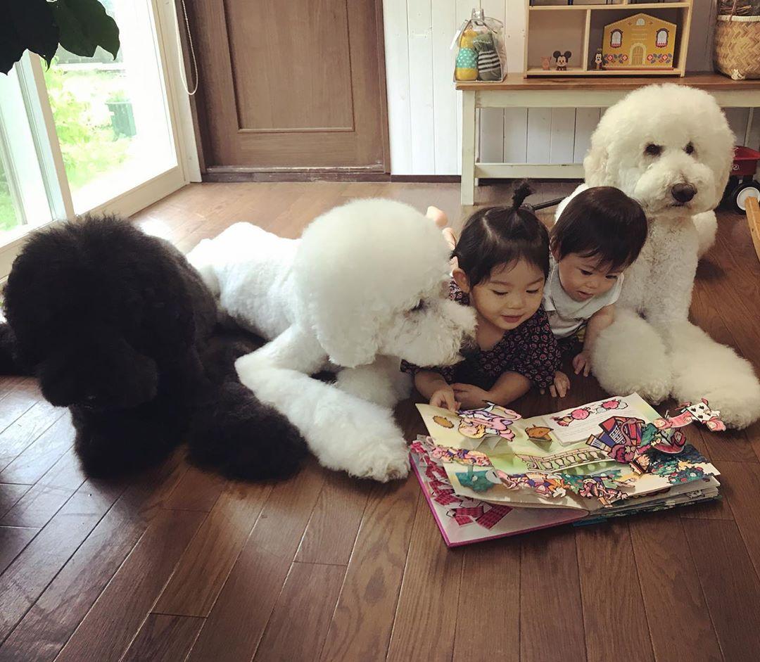 Bà ngoại bỗng nổi như cồn khi khoe bộ ảnh các cháu chơi cùng 3 chú cún cưng cực kỳ dễ thương - Ảnh 7.