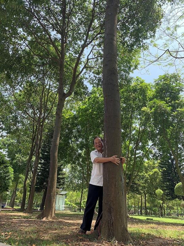 Hàng nghìn cây sao đen được Chủ tịch Quốc hội Nguyễn Thị Kim Ngân chỉ đạo trồng ở Hải Dương cách đây gần 20 năm, giờ ra sao? - Ảnh 2.