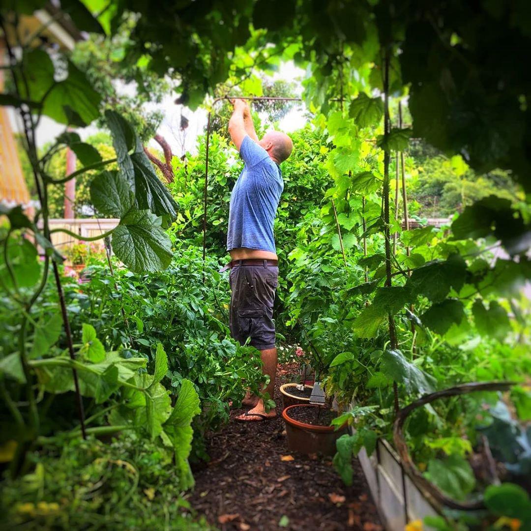 Khu vườn ngoại ô đầy nắng và rau quả sạch của gia đình hai vợ chồng cùng 5 người con - Ảnh 6.