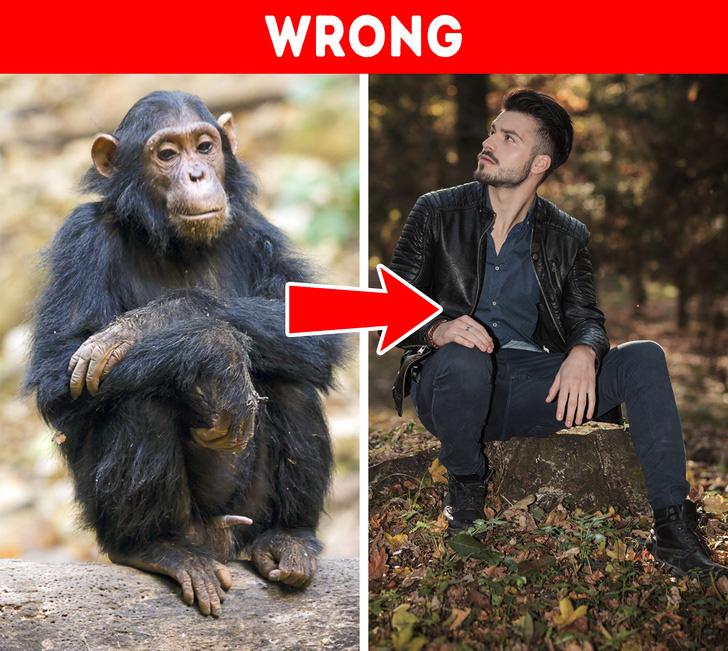Con người tiến hóa từ vượn? Những quan điểm sinh học sai lầm mà nhiều người vẫn tin sái cổ - Ảnh 1.