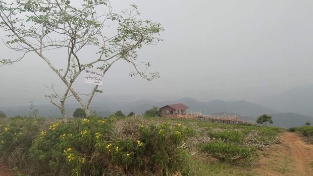 """Đóng cửa đồi """"săn mây"""" mới nổi Yumonang ở Đà Lạt vì du khách xả rác bừa bãi, dân tình ngẩn ngơ tiếc nuối vì chưa kịp tới ngắm - Ảnh 3."""