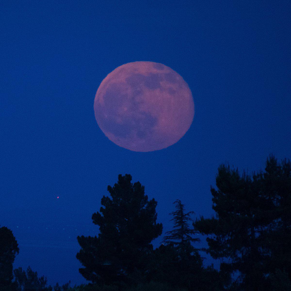 Ngất ngây với một loạt khoảnh khắc về hiện tượng mặt trăng dâu tây hiếm có diễn ra vào đêm qua, rạng sáng nay - Ảnh 9.
