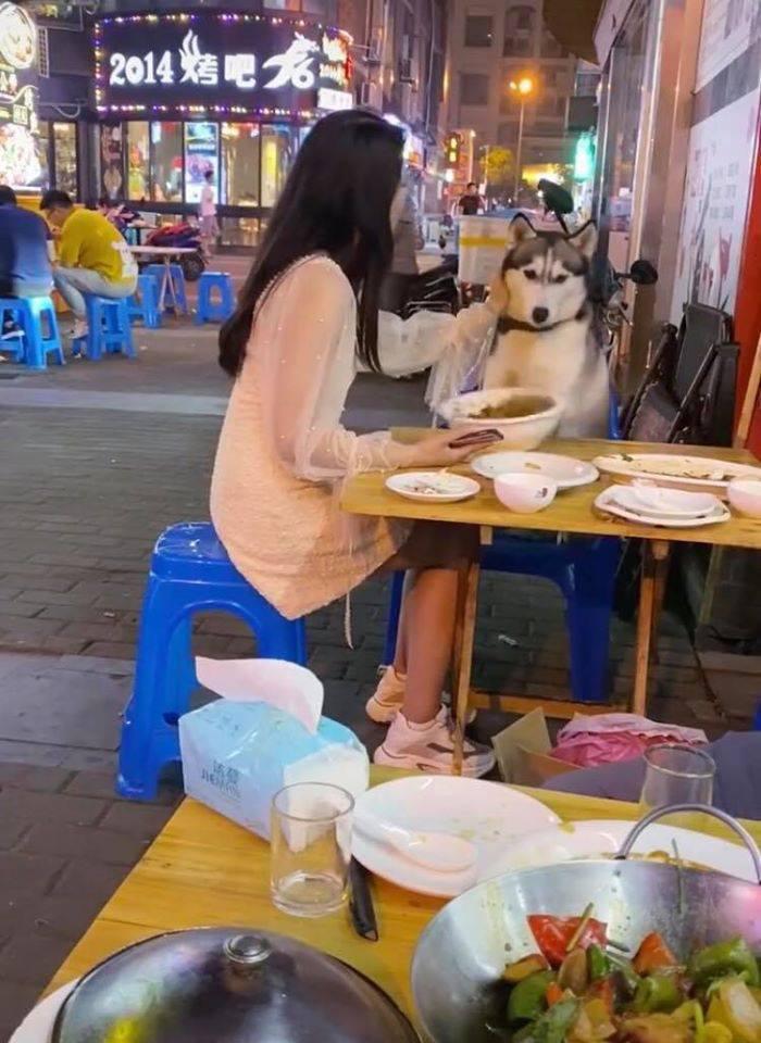 Đùa nghịch với chó lạ, cô gái phớt lờ cảnh báo của người chủ và cái kết ê chề giữa quán - Ảnh 3.