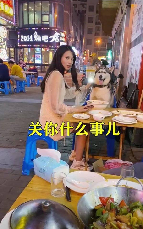 Đùa nghịch với chó lạ, cô gái phớt lờ cảnh báo của người chủ và cái kết ê chề giữa quán - Ảnh 2.
