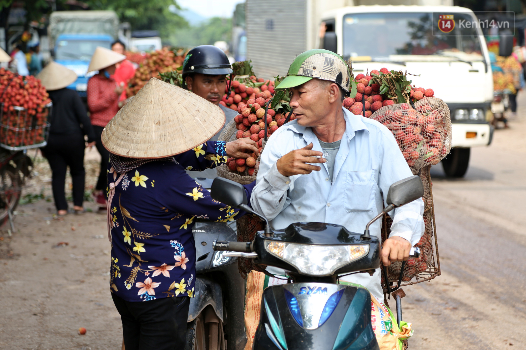 """Người dân Bắc Giang tấp nập đi bán vải thiều chín mọng: """"Chăm sóc cả năm chỉ chờ ngày này - Ảnh 3."""