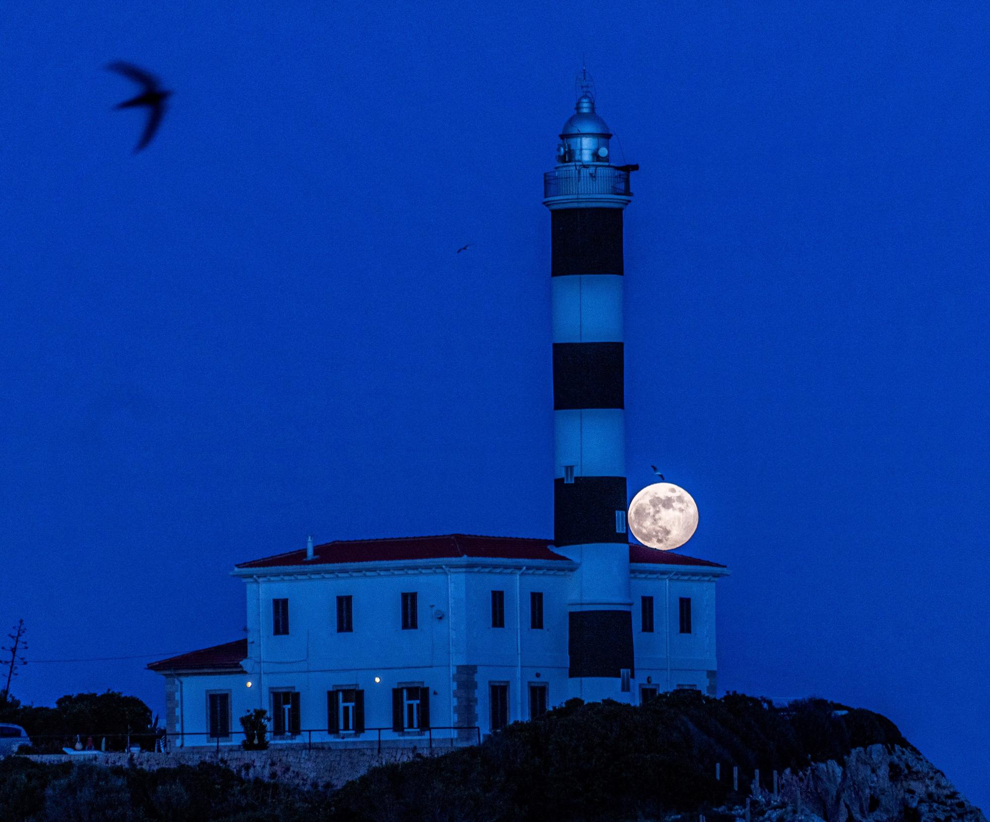 Ngất ngây với một loạt khoảnh khắc về hiện tượng mặt trăng dâu tây hiếm có diễn ra vào đêm qua, rạng sáng nay - Ảnh 3.