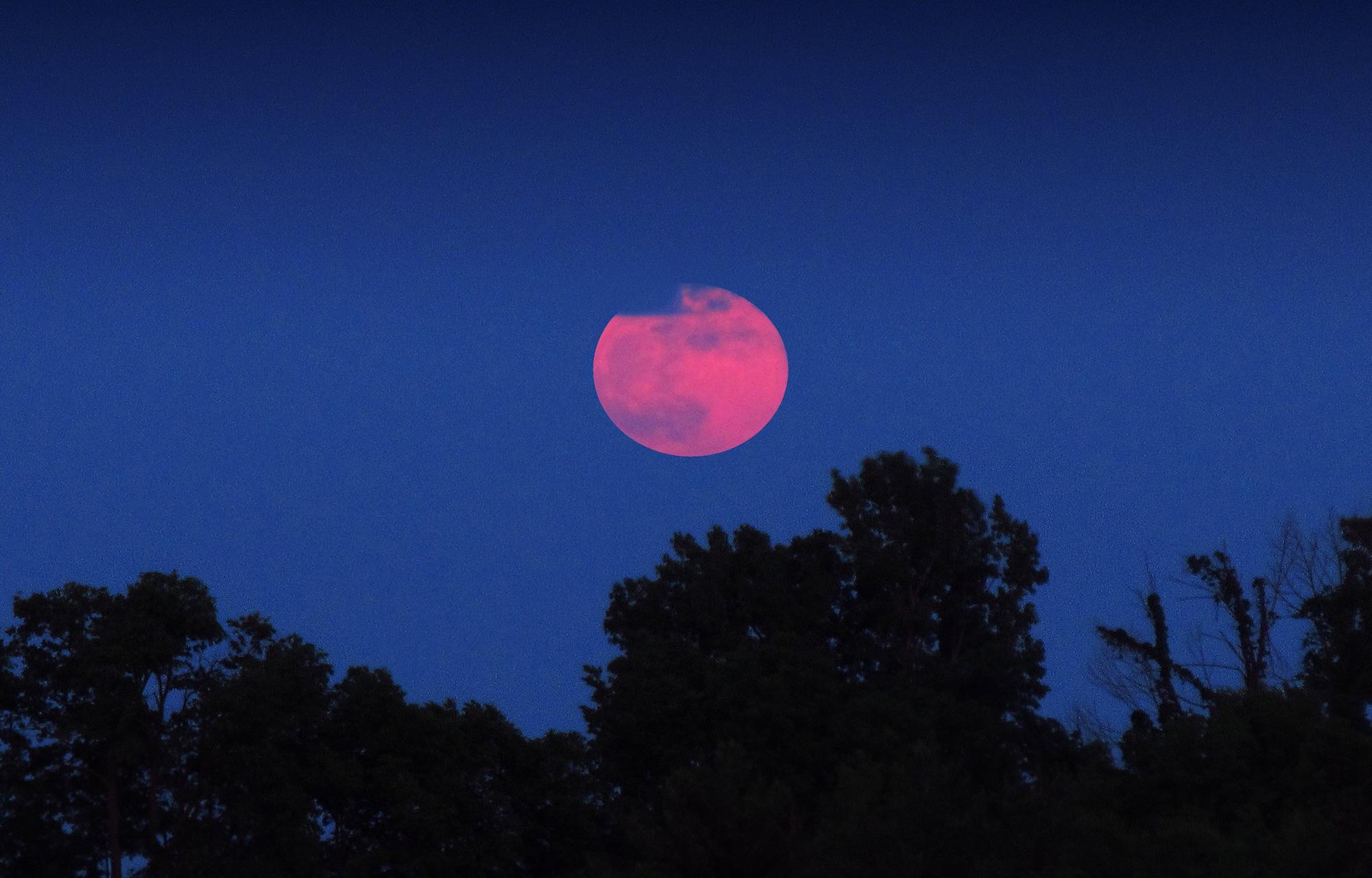 Ngất ngây với một loạt khoảnh khắc về hiện tượng mặt trăng dâu tây hiếm có diễn ra vào đêm qua, rạng sáng nay - Ảnh 6.