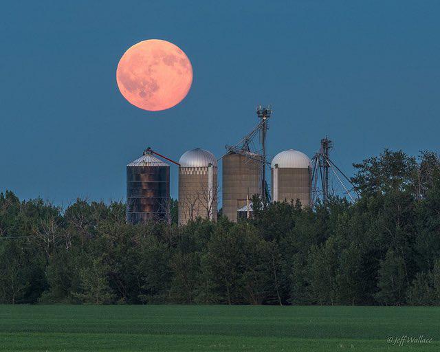Ngất ngây với một loạt khoảnh khắc về hiện tượng mặt trăng dâu tây hiếm có diễn ra vào đêm qua, rạng sáng nay - Ảnh 5.