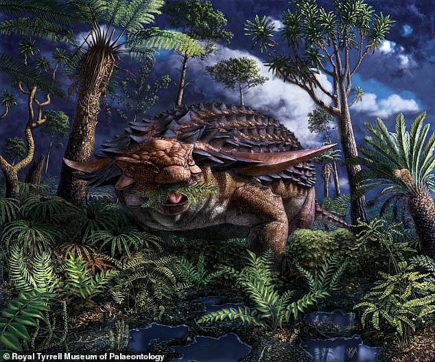 Phát hiện bữa ăn được bảo quản nguyên vẹn trong dạ dày khủng long bọc giáp sống cách đây 110 triệu năm - Ảnh 1.