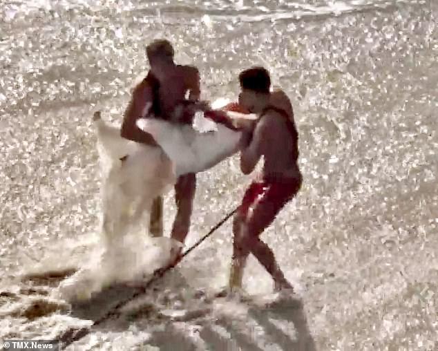 Ra bãi biển chụp ảnh cưới, cô dâu chú rể bị sóng cuốn phăng ra biển, khoảnh khắc con sóng lớn ập đến mọi người thót tim - Ảnh 5.