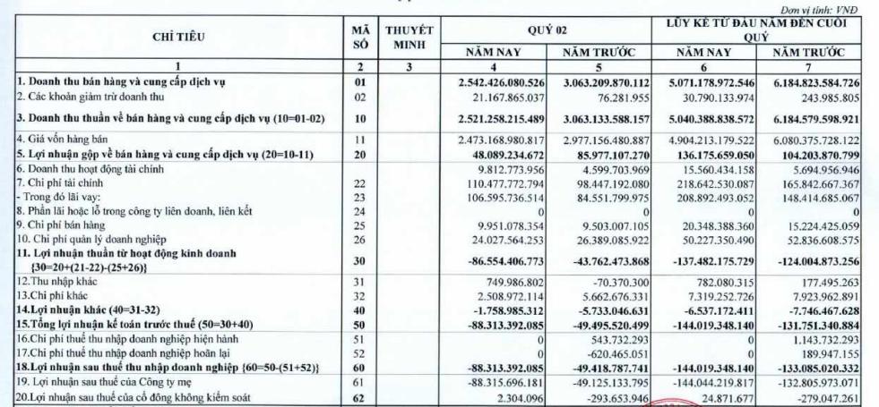 Pomina (POM) lỗ tiếp 88 tỷ đồng trong quý 2, nâng tổng lỗ 6 tháng đầu năm lên 144 tỷ đồng - Ảnh 1.