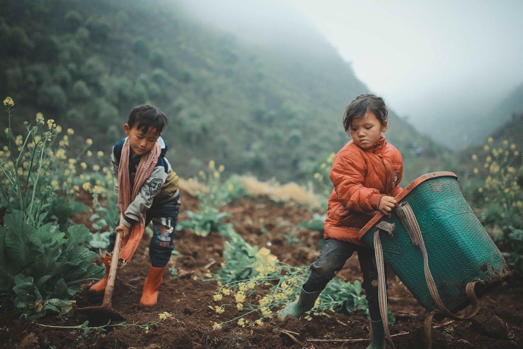 2 bé HMông cặm cụi cuốc đất, gieo hạt phụ bố mẹ và nụ cười khiến bao người tan chảy - Ảnh 4.