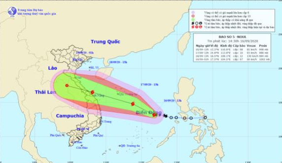 Đà Nẵng sẵn sàng ứng phó với bão số 5 và mưa lớn - Ảnh 1.