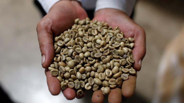 Việt Nam vượt Brazil trở thành nhà cung ứng cà phê hàng đầu vào Nhật Bản - Ảnh 2.