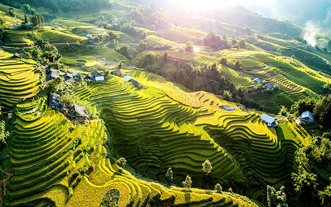 KTS. Phạm Thanh Tùng: Việt Nam có đầy đủ tiềm năng về thiên nhiên và con người để trở thành một quốc gia farmstay - Ảnh 1.