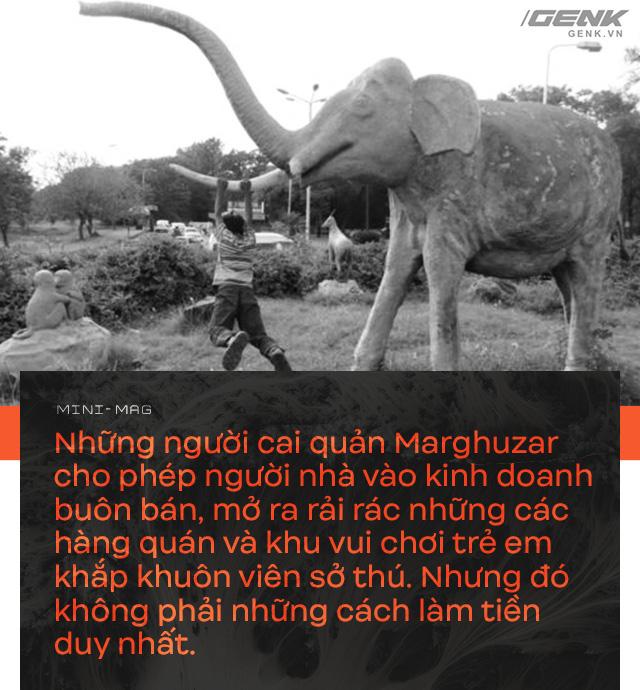 Nhờ sức mạnh của tiếng hát, con voi cô độc nhất hành tinh tìm thấy tự do cho mình sau nhiều thập kỷ sống trong xiềng xích - Ảnh 5.